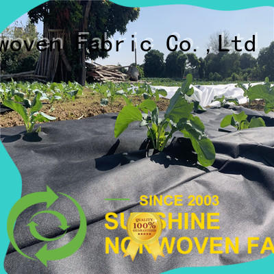 quality weed control fabric resistant wholesale for farm