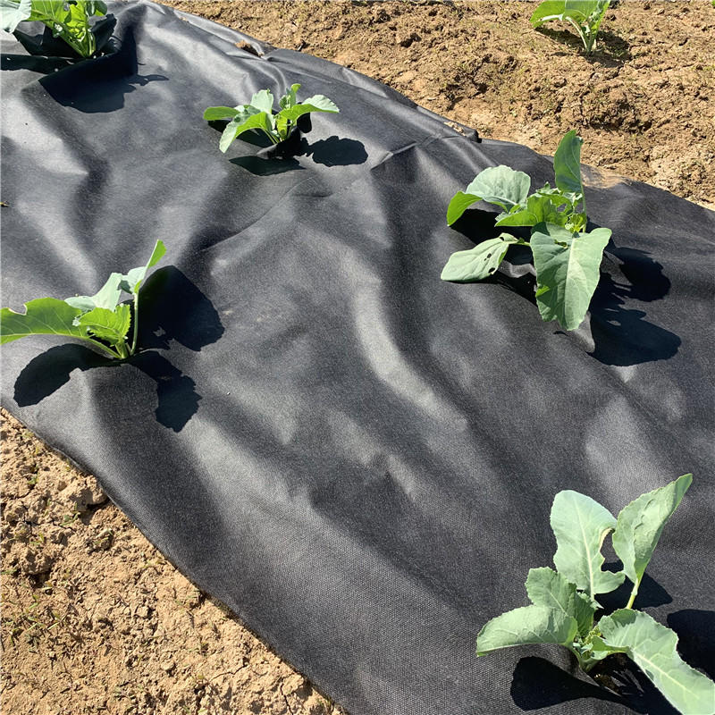 Eco-friendly Agricultural UV Resistant Fabric Material/Garden Ground Cover Fabric