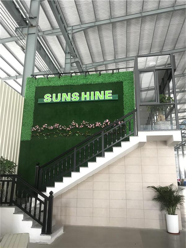 New Factory of Sunshine