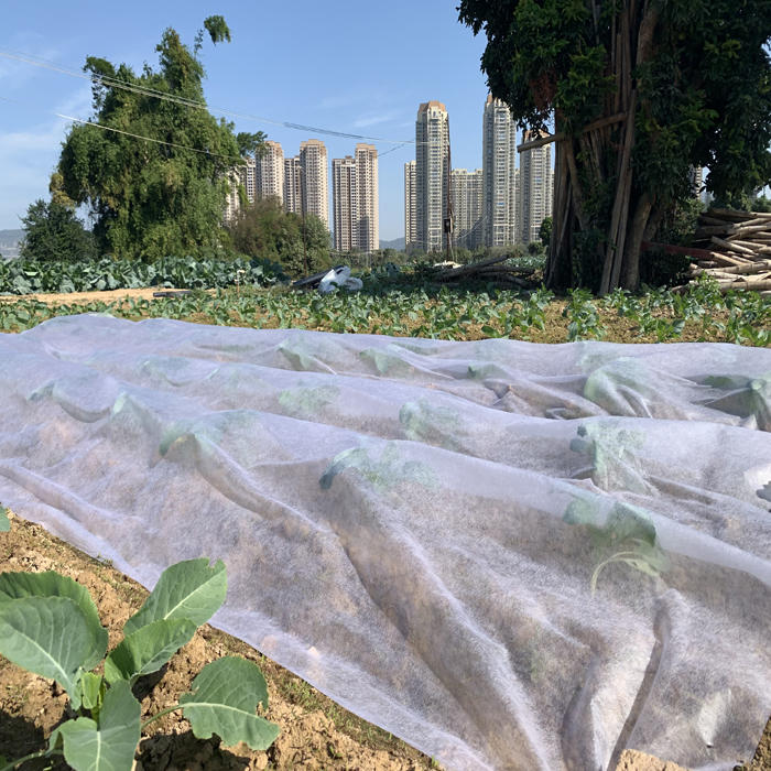 Agriculture PP Weed Control Mat Nonwoven Fabric Landscaping Fabric