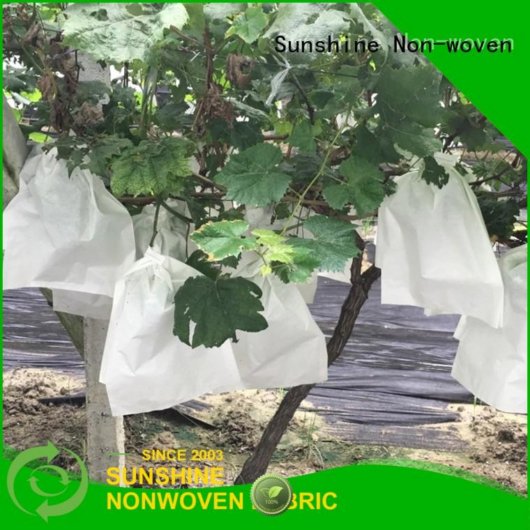 UV-resistant plant cover fabric polypropylene supplier for fruit