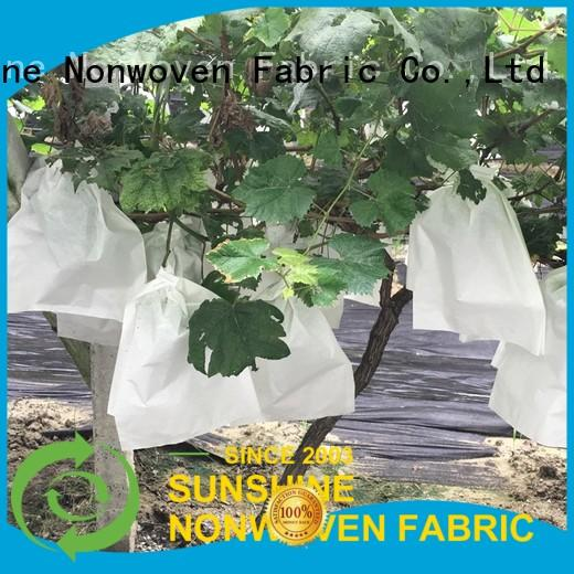 Sunshine grape plant cover fabric supplier for fruit